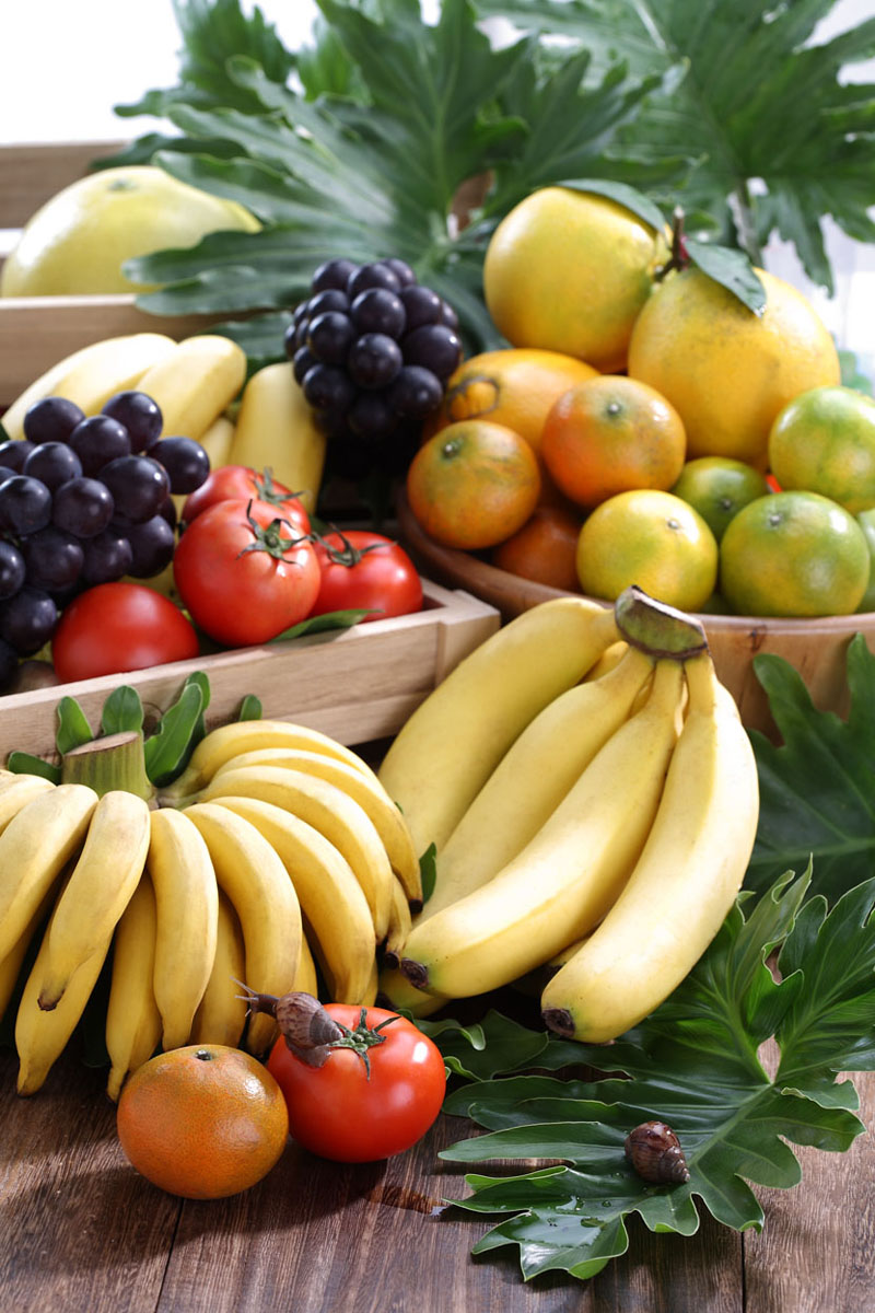 品介绍 339农家市集 台湾当季水果蔬菜,有机农产品,产地直销